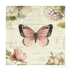 COMPOSITION, butterfly