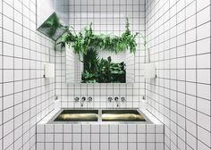 """Ukrainian studio AKZ Architectura has completed this vegetarian cafe in Kiev, covering the interior in white tiles and installing a """"jungle"""" in the toilets"""