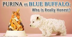 Pet food giant Purina files a lawsuit against a smaller competitor, Blue Buffalo, alleging that it is not honest about the ingredients in its pet food. http://healthypets.mercola.com/sites/healthypets/archive/2014/07/07/purina-blue-buffalo-pet-food.aspx