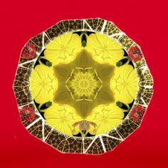 Ancient Near East, Human Soul, Queen Bees, Underworld, Mandala Art, Natural World, Wearable Art, Bamboo, Meditation