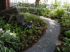 curving gravel path through shade garden