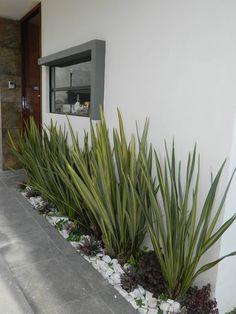Jardins modernos por ECNarquitectura