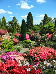 Leonardslee Gardens- Horsham, West Sussex, England Copyright: Alan Priest