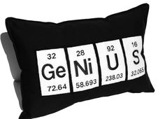 Genius Periodic Table Embroidered Science Chemistry Black Cotton Pillow. $37.00, via Etsy.