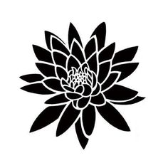 Water Lily Tattoo Designs Creative water lily tattoo design ...