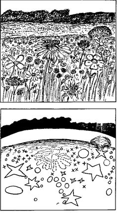 Jacob Von Uexkull's drawing showing how a bee's meaningful foraging environment is centred on stars and crosses, not circle shapes