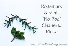 "Foodless Fridays - Rosemary & Mint ""No Poo"" Hair Cleansing Rinse - I Breathe... I'm Hungry..."