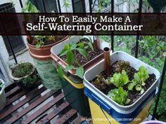 15 DIY Self Watering Planters That Make Container Gardening Easy Diy Self Watering Planter, Self Watering Containers, Plant Containers, Organic Gardening, Gardening Tips, Urban Gardening, Bucket Gardening, Indoor Gardening, Vegetable Garden