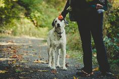 For more check out http://www.megganjoyphoto.com/#!/lucky-119-dog-years/