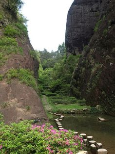 Path between cliffs and tea plants in Wuyishan, China (by MEWichmann).