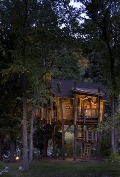 Tree House, Carbondale, Colorado