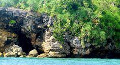 Danjugan Marine Sanctuary and Biodiversity Reserve - Palmas Del Mar Conference and Resort Hotel