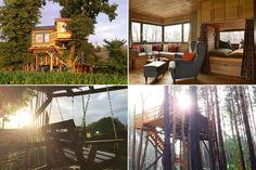 """Wer schon immer mal in einem Baumhaus übernachten wollte, hat nun die Möglichkeit dazu: Airbnb und andere private Ferienhausvermieter bieten inzwischen nicht nur """"Standartappartements """", sondern auch kreativere Urlaubsunterkünfte in luftigen Höhen an. TRAVELBOOK stellt die schönsten vor."""