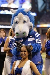 fbd0e32a3 Indianapolis Colts Cheerleaders shave their heads in support of Colts head  coach Chuck Pagano who has