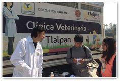 Se llevó a cabo la Primera Feria del Bienestar y Protección Animal en Tlalpan