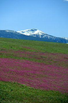 Lolo Peak, Missoula MT photo by Patrick Clark