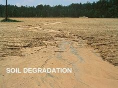Soil Degradation - A PowerPoint presentation introducing the issue of soil degradation.