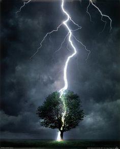 Splitting of the Oak Lightning Photography, Storm Photography, Photography Tips, London Photography, Dance Photography, Photography Equipment, Wedding Photography, Pictures Of Lightning, Thunder And Lightning