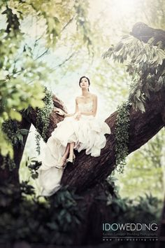 Korea Wedding, Korea Wedding Photo, Korean Wedding, Korean Wedding Photo, Korea…