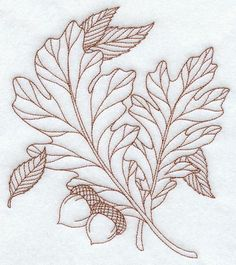 Machine Embroidery Designs at Embroidery Library! - White Oak Leaves (Redwork)
