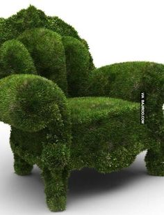 21 Pictures Of Amazing Sofas Made Of Green Grass (Creativity)