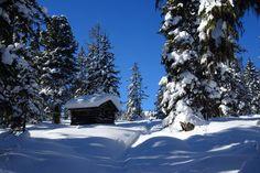 Erlebnisreiche Winterpauschalen im Wanderhotel Kirchner, Bramberg Mountains, Nature, Travel, Outdoor, Ski Resorts, Winter Vacations, Winter Landscape, Ski, Treehouse