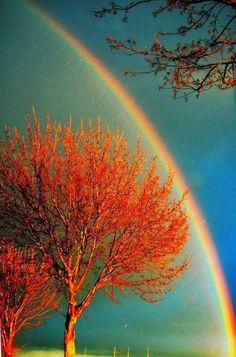 21 Belas Imagens da Natureza