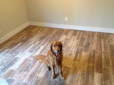 """Ceramic tile that looks like wood  Style Selections Natural Timber Cinnamon 6""""x24"""" porcelain floor tile with Mapei Chamois grout (all from Lowe's)"""