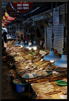 This is a fish market. Koreans eat a lot of fish in their meals. Yeosu, World Street, Asia, Shopping Street, Buddhist Temple, Fishing Villages, North Korea, Seafood Market, Around The Worlds