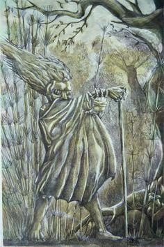 Tem uma aparência distinta, algumas vezes descrita como bela ou encantadora, e carrega um bastão ou cajado mágico. Como a maioria de seus irmãos, habita na mata, sendo considerado o protetor da erva-mate. Algumas vezes é visto como protetor dos tesouros escondidos.