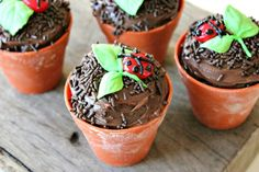 these would be great for individual dirt desserts as well ! I can't wait til William has friends over for parties :)