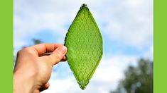 人類はついに光合成を手に入れた!人工の葉が酸素を作り出す奇跡