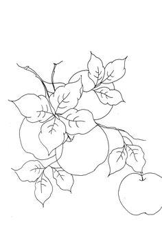 Acrilex • Tintas Artísticas - Galeria de Riscos - Frutas