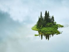 """Island in the Sky - Photograph by Shane Kalyn. """"There is an ethereal, otherworldly feeling to this photograph, as this little island in the middle of Tumuch Lake in northern British Columbia..."""" Link: http://photography.nationalgeographic.com/photography/photo-of-the-day/floating-island-tumuch-lake/"""