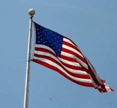 flag day for 2015