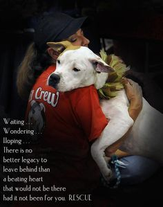 RESCUE! You can't begin to imagine the LOVE you feel and get in return.