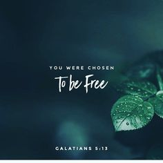 #free #promesse 25/40 #godisgood