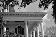 Bellamy Mansion, Wilmington, NC {photo credit: Shannon Lee}