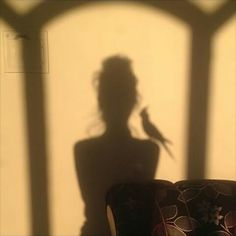 "Things that make me starry eyed - shadows - sickmindsmedia:"" A shadow work photography by a graphic designer, our hashtag! Aesthetic Photo, Aesthetic Pictures, Shadow Pictures, Modern Disney, Shadow Play, First Art, Golden Hour, Photography Poses, Portrait"