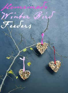 DIY Bird feeders - use cookie cutters to make any shape! Also fun to make with kids and give as gifts for winter birds.