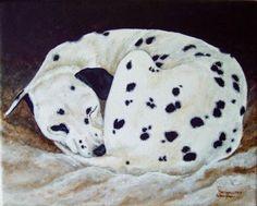 dalmatians sleeping   Circle of Sleep ~ Dalmatian Dog Amberson, original painting by artist ..