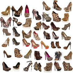 I LOVE LEOPARDO,