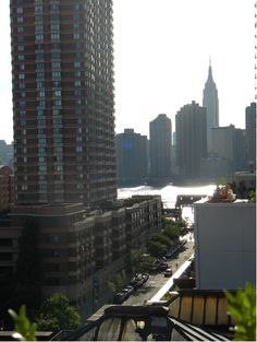 View from Solarium roof deck in Long Island City Queens