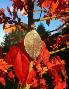 Hey, I found this really awesome Etsy listing at https://www.etsy.com/uk/listing/253886804/real-leaf-golden-necklace-treat-yourself