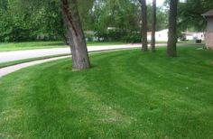 Choose John Vosburg if you're searching for a professional who values quality workmanship. He provides lawn mowing services at affordable prices. Check out his estimates.
