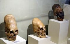 These Elongated Skulls Are Unknown To Any Human, Primate, or Animal | Spirit Science