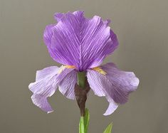 Crepe Paper Bearded Iris, Single Stem - Wedding Flowers - Home Decor - Florist Supply - Paper Flowers by NectarHollow on Etsy Paper crafts and paper flowers Tissue Paper Flowers, Felt Flowers, Diy Flowers, Flower Decorations, Fabric Flowers, Wedding Flowers, Wedding Decoration, Paper Flower Art, How To Make Paper Flowers