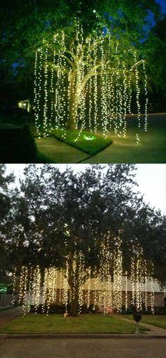 Cheap But Stunning Outdoor Christmas Decorations Ideas 44