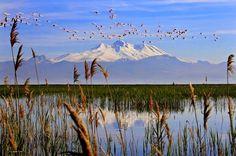 Sultan Sazlığı Milli Parkı/Erciyes dağı/Kayseri/// Alanın kuzeyi Erciyes dağı (3916 m), doğusu Develi, Akpınar, Çiçekliyurt dağları (2074–2057 m), Güneyi Toros silsilesine bağlı Aladağlar (ort 3373 m) ve Elmalı dağları (2235 m) ile Batısı Kartalkaya (1958 m) ve İncil dağlarıyla (1759 m) çevrilidir.