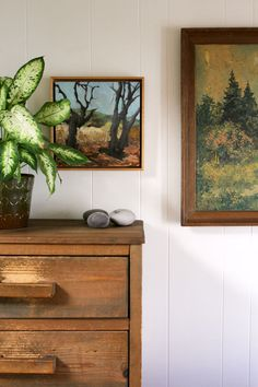 I need some oil paintings. Also love the plants and wood.